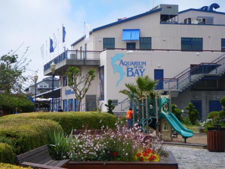 Aquarium Of The Bay San Francisco California Usa